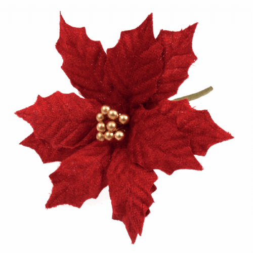 Poinsettia Medium 12 x 1 Stem Velvet Red